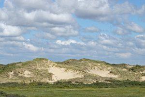 Stuifduin Berkheide Kalahari
