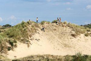 loopduin kalahari lopen glijden zand stuifduin kaal Berkheide