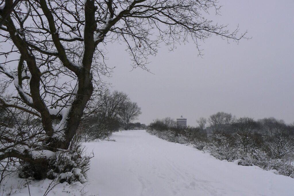 Berkheide - kavel 9 - beheerweg - 19 december 2010 - Gerard van der Klugt