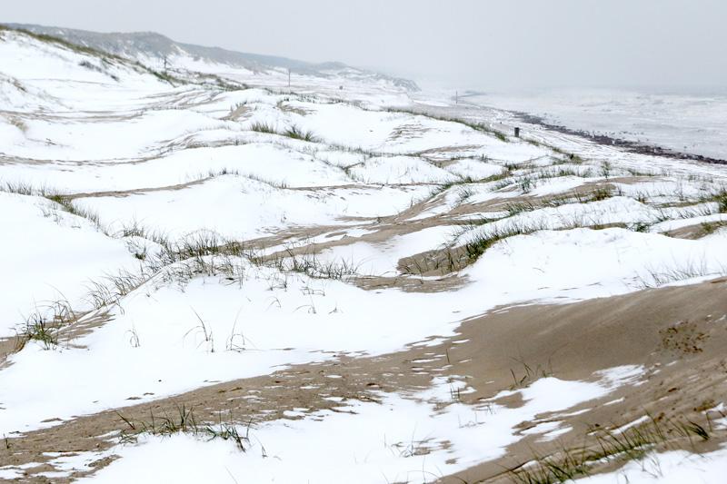 Zeereep sneeuw strand Berkheide