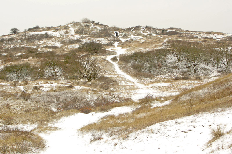 Berkheide kavel 9 Witte Berg