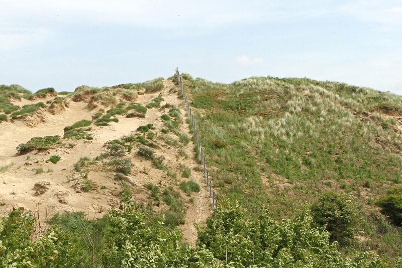 Berkheide grens kavel 11 Sportpark Nieuw Zuid