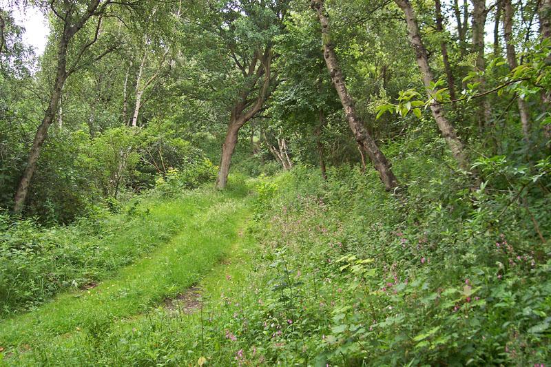 Berkheide winning 3 bos