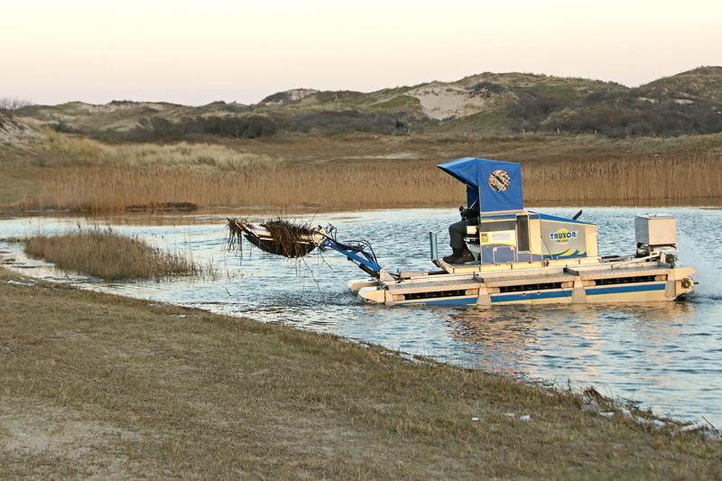 Berkheide kavel 5a Drie Landjes riet verwijderen duinplas duinmoeras