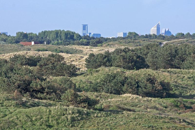 Berkheide kavel 5a uitzicht Den Haag skyline Duinoord duinen dennen