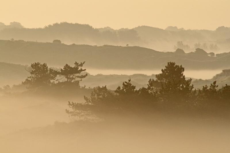 Berkheide kavel 5 uitzicht ruggetjes ochtend nevel