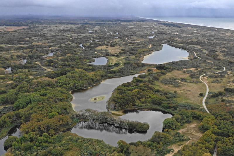 Berkheide Hoefijzermeer Aalscholderkolonie drone luchtfoto kavel 8