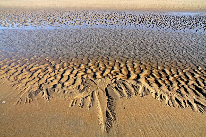 Berkheide strand patronen