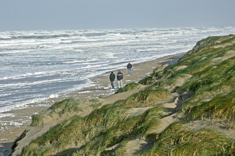 Berkheide strand storm ruige zee