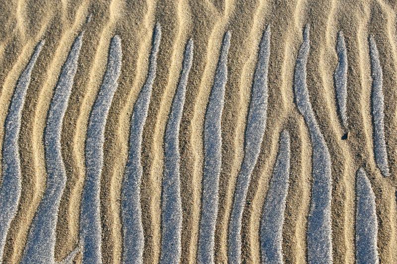 rijp smeltend zand ribbels winter Coepelduynen
