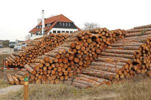 hout stapels Ganzehoek Berkheide Duinoord