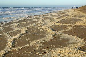 Strand schuimranden storm Wassenaarse Slag