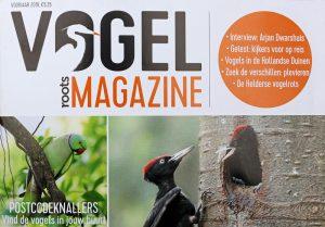 Roots Vogelmagazine voorjaar 2019 berkheide Lentevreugd vogels